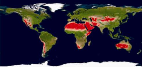 世界地図 地図 世界地図 : 砂漠化の原因・現状|共同利用 ...
